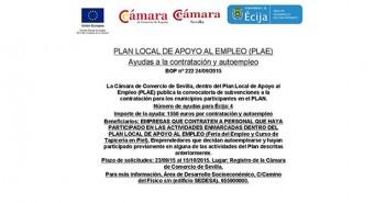 Ayudas a la contratación de Tapicería y Feria del empleo