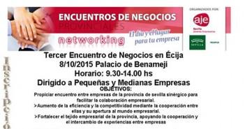 Encuentro de Negocios en Écija Networking 2015 - AEMMCE